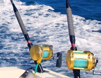 fishing portofino island